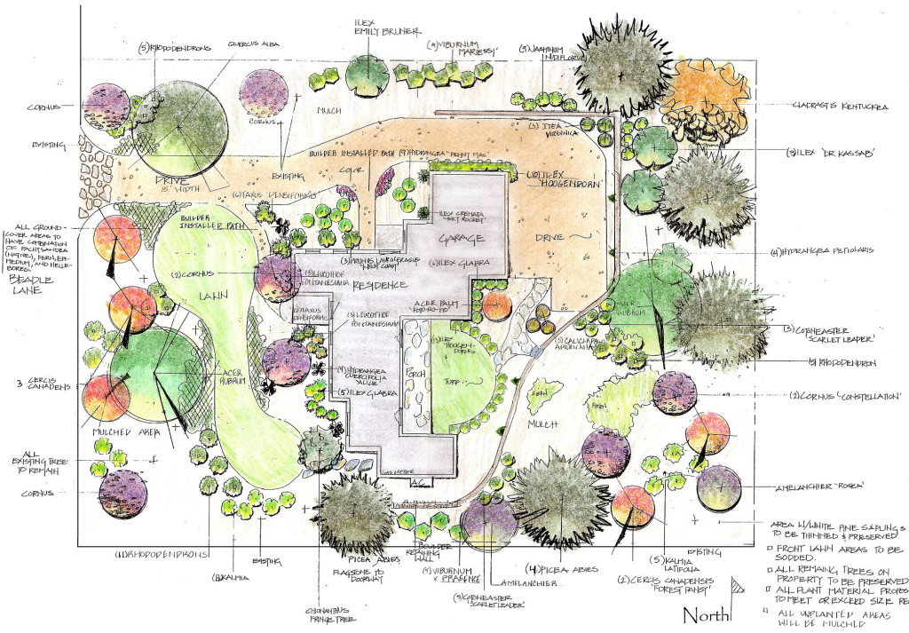 Landscaping and design southern lawn for Backyard landscape design plans